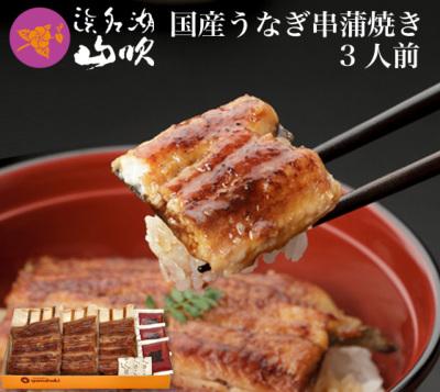 国産うなぎの串蒲焼き3串